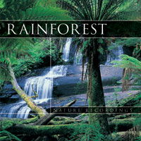 CD - Rainforest